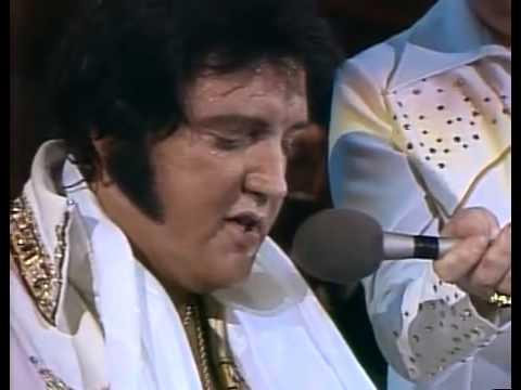 Elvis Tv Show Dog